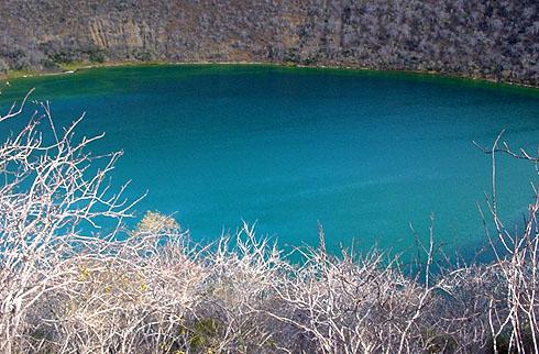 ダーウィンレイクとふじみ湖