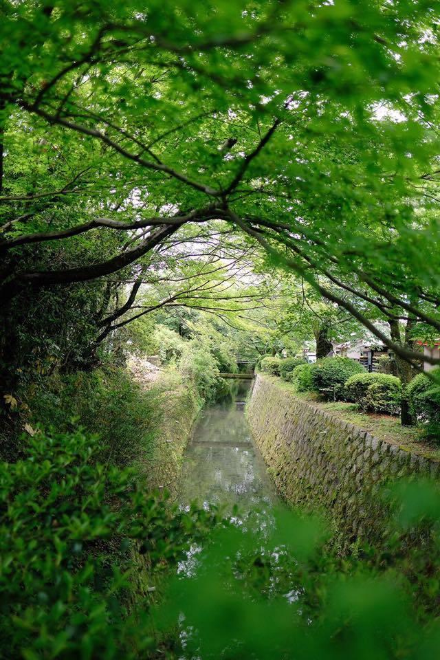 京都で取材