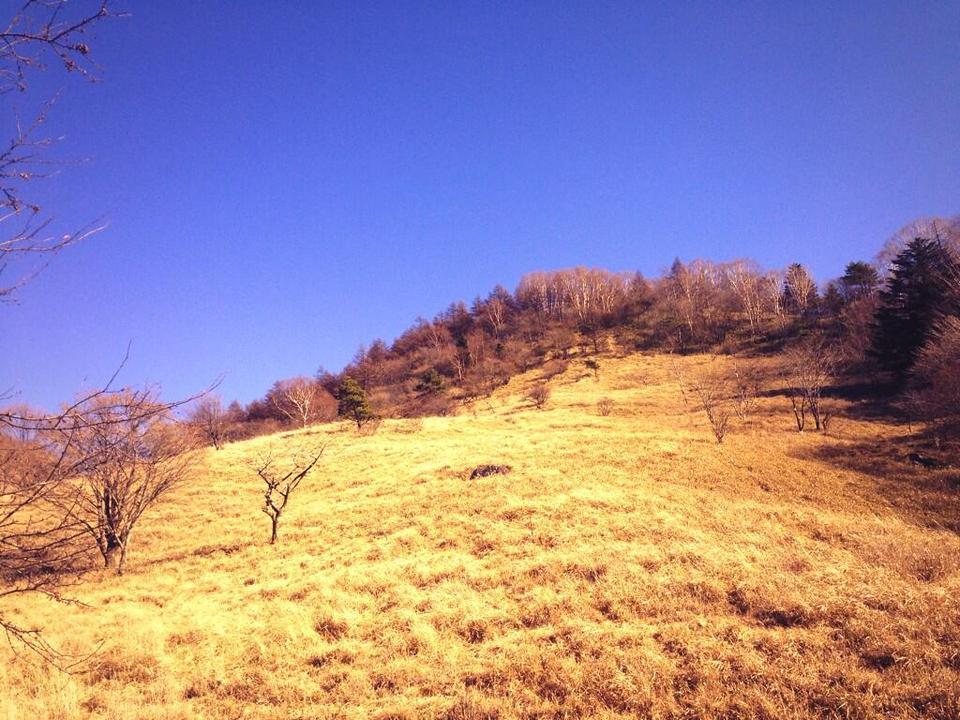 山梨、山歩き2