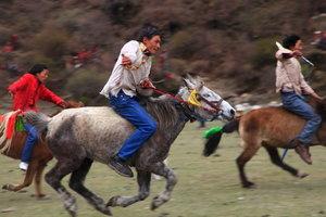 弓の後は馬のレースが始まった
