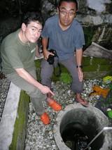 もうすでに地下水が塩化し使われなくなった井戸