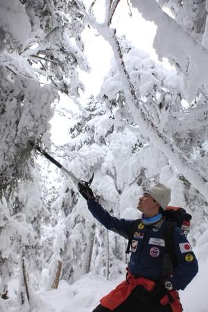 雪の樹林帯を歩く