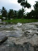 このように勢いよく大潮が噴き出している処もある