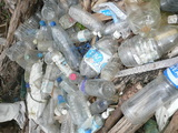 これらのペットボトルも自然にこのようにたまって流れ着いていた
