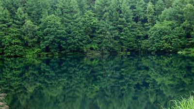 (6)山麓にあるひっそりとしている池