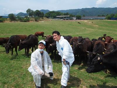 13番目 生き延びていた牛に「生きていて有難う!」と