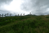 レイテ決戦の最大の激戦地となったノモン峠
