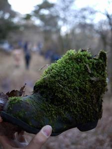 苔の生えた長靴