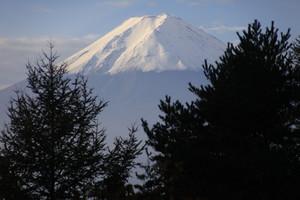 三ツ峠手前まらの富士山(平賀淳撮影)